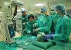 V Międzynarodowy Kurs Chirurgii Endoskopowej Zatok